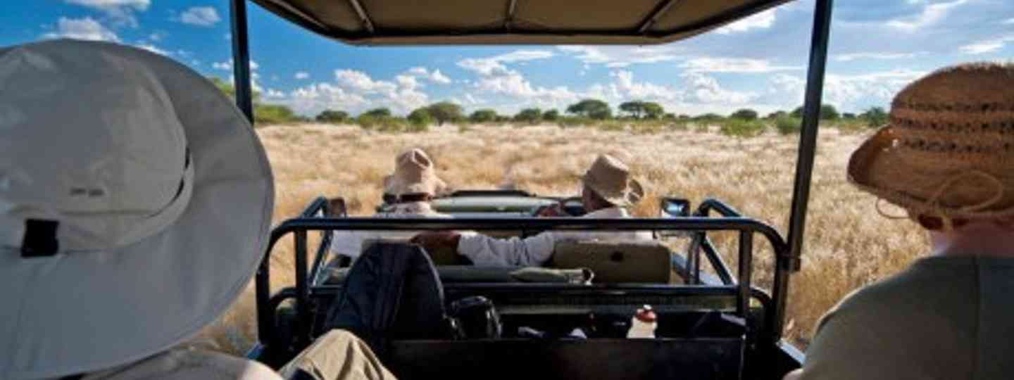 Don't get caught out on your first safari with these top tips (Dale Morris)