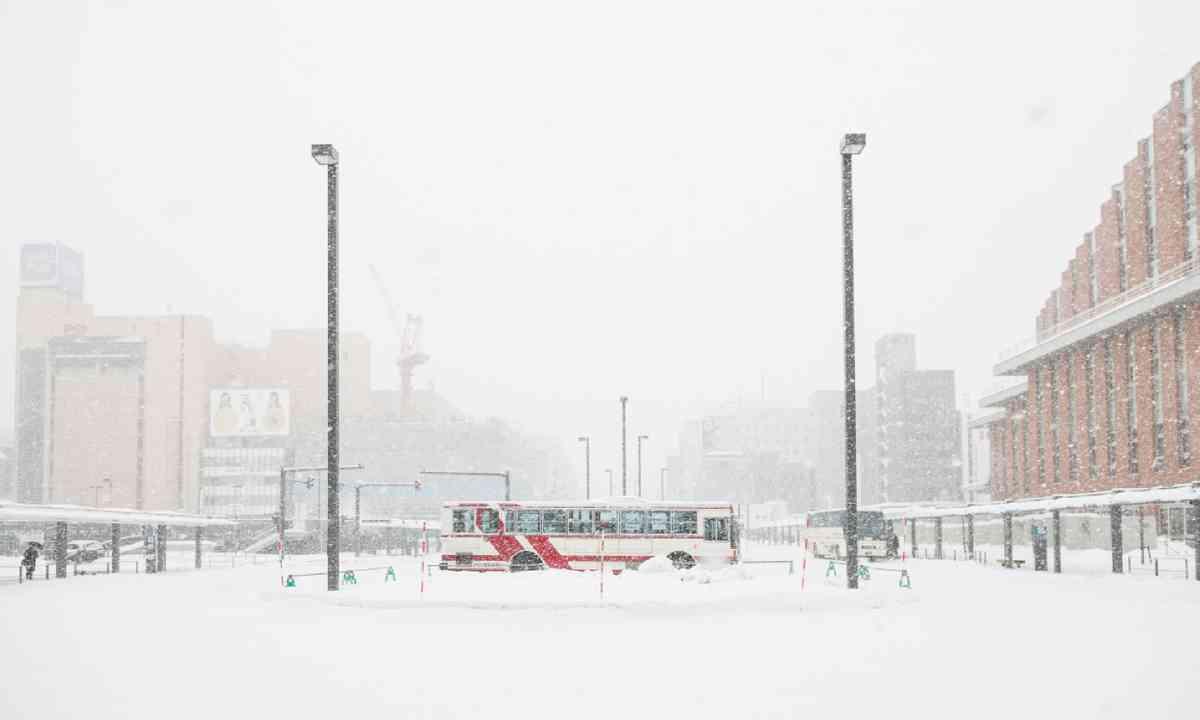 Bus in Asahikawa Station (Shutterstock)