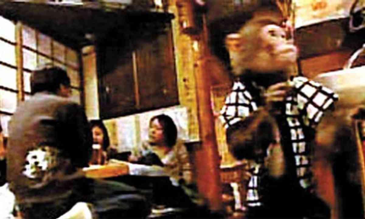 Monkey Restaurant