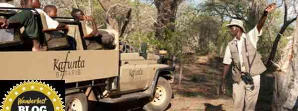 Kids on Safari (Edward Selfe)