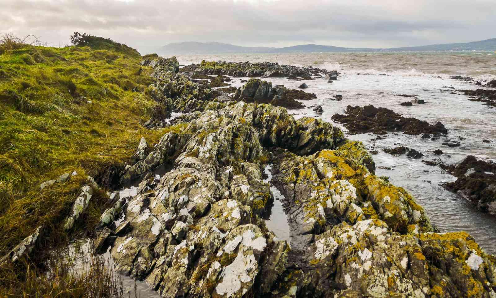 Irish coastal scene at Helen's Bay (Shuttershock)