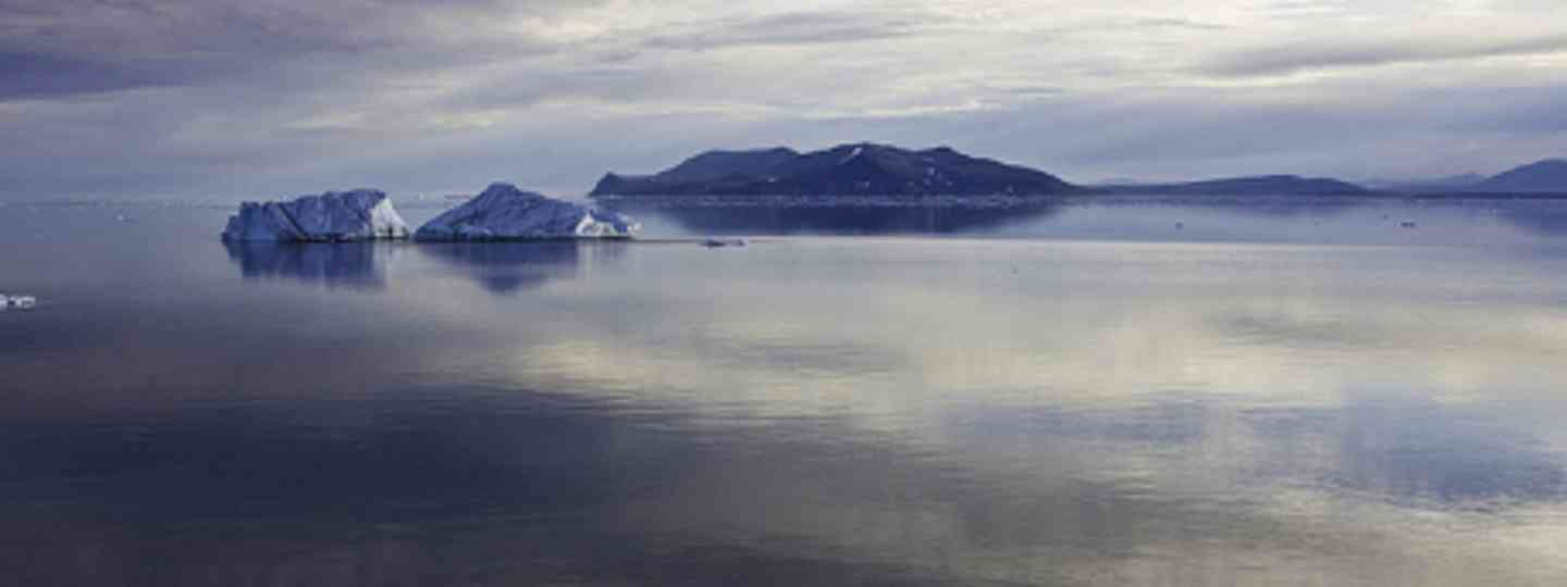 Arctic ice bergs (Polar Cruises)