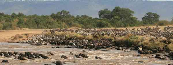 The great migration, Tanzania (Michiel Van Balen)