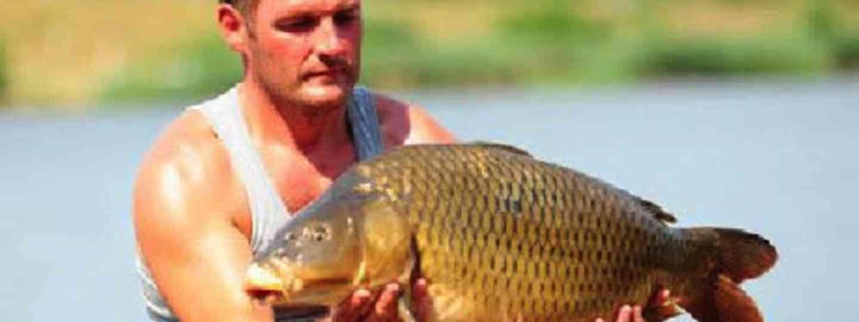 Big Carp (Nat Geo Wild)
