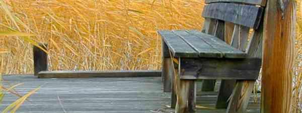 Seat in reeds (Biggles Springfeldt)