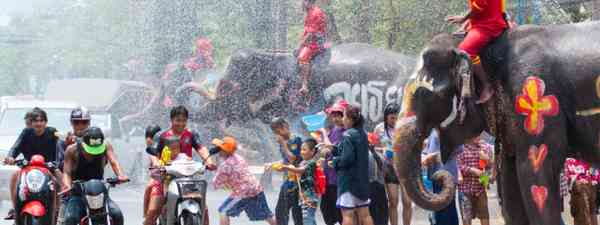 Revellers and elephants join in water splashing during Songkran Festival (Shutterstock)