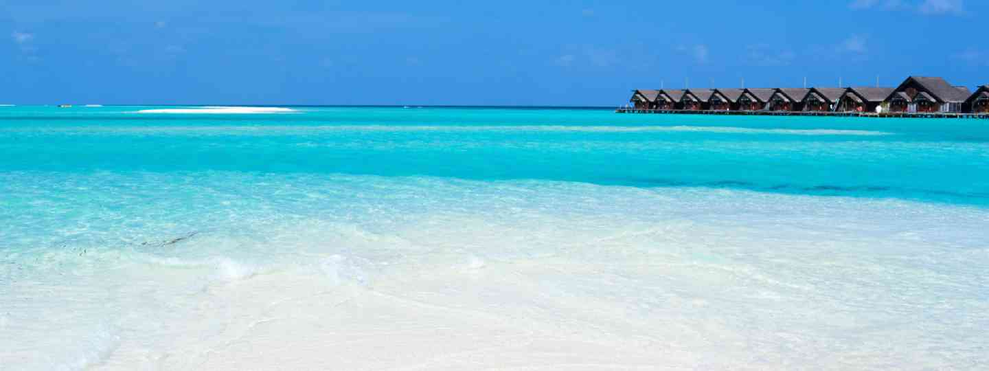 Beautiful tropical beach on exotic island at Maldives (Shutterstock: see credit below)