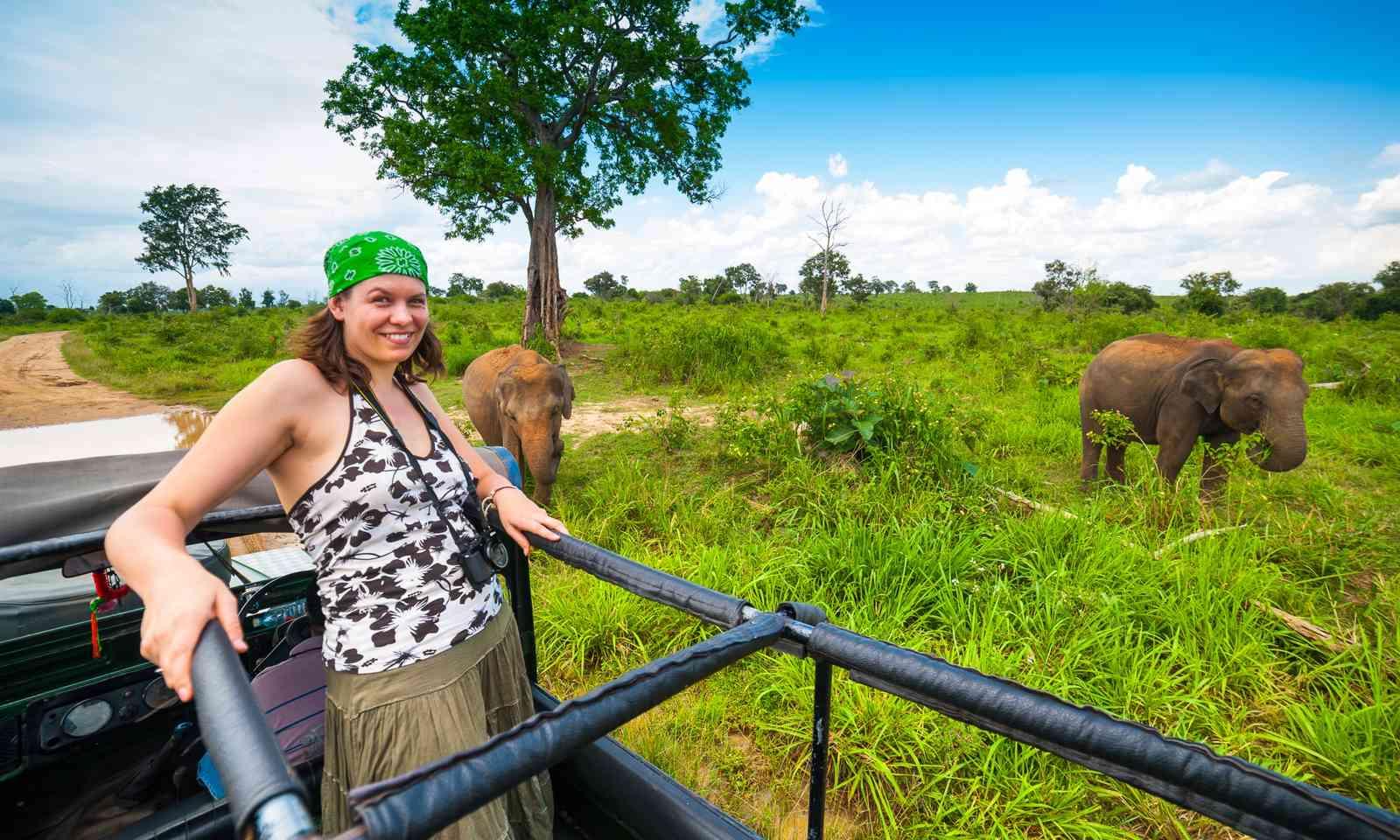 Observing elephants in Sri Lanka (Dreamstime)