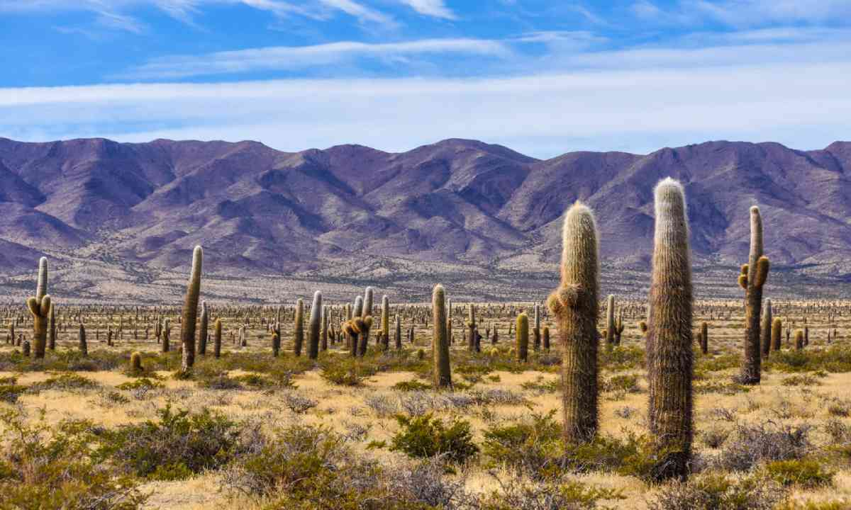 Countryside around Cachi (Shutterstock)