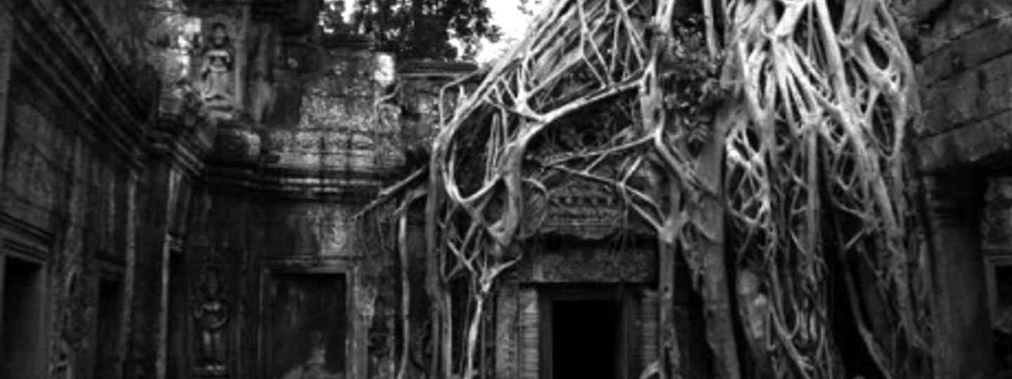 Ta Prohm temple, Angkor Wat (Fred Caws photography)