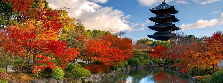 Toji Pagoda in autumn (Dreamstime)