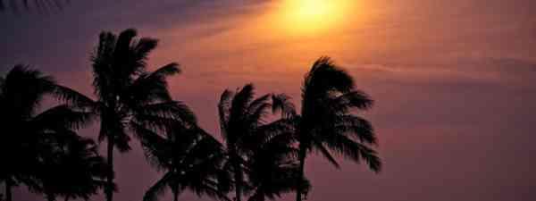 Sabah sunset (Steph Leung)