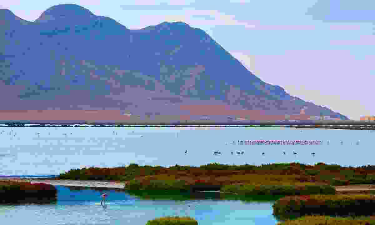 Las Salinas in Cabo de Gata Almeria (Dreamstime)