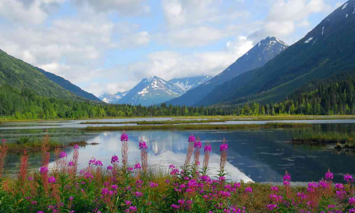 Tern Lake on the Kenai peninsula in Alaska (Shutterstock)