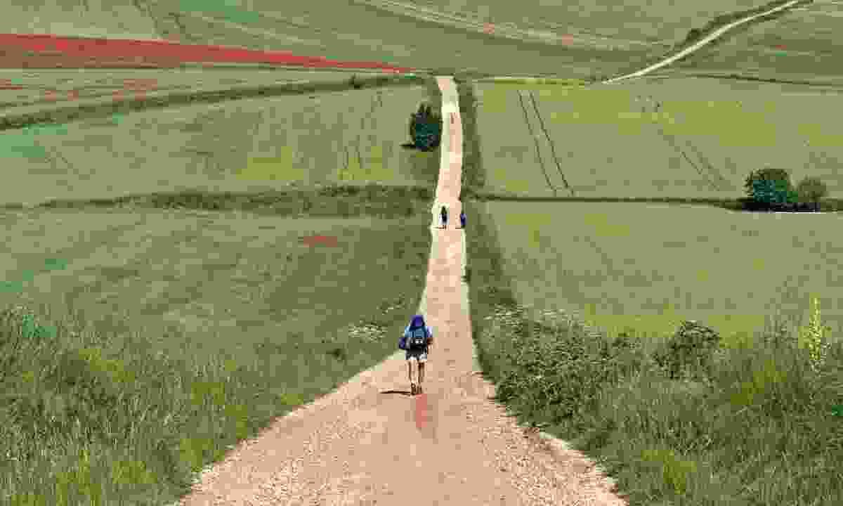 Walking along 'The Way' (Dreamstime)