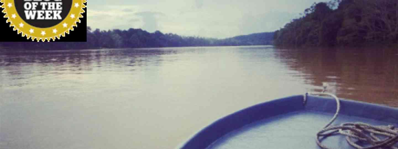 A river in Borneo (Emily Snell)