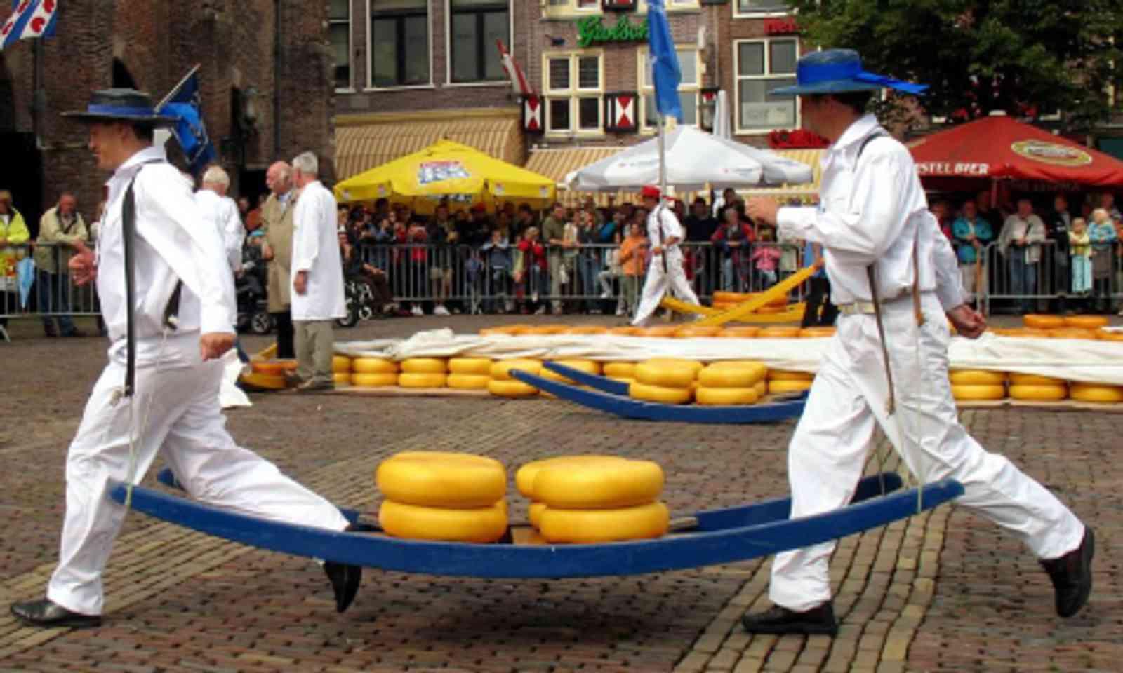 Dutch cheese (Coanri/Rita)