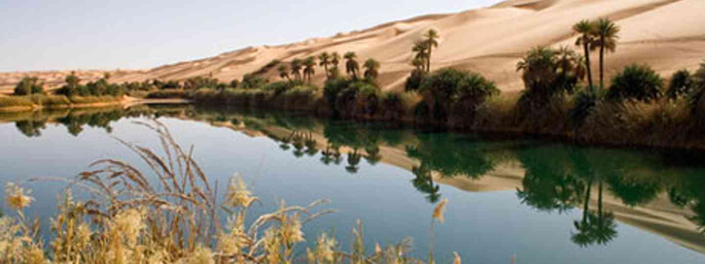 A desert oasis (Photo: Dreamstime)