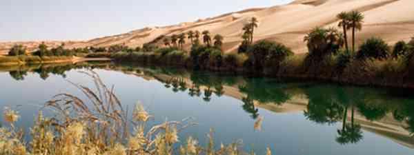A desert oasis (Photo: Dreamstime)