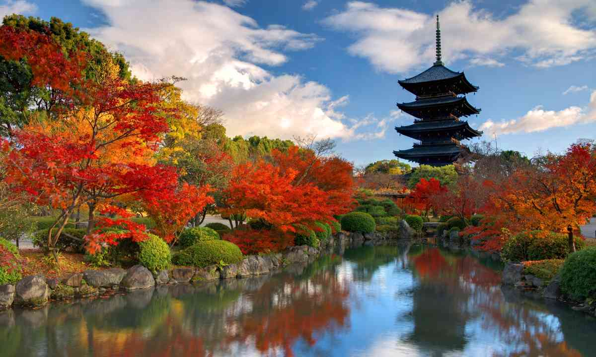 Toji Pagoda, surrounded by autumn colours (Dreamstime)