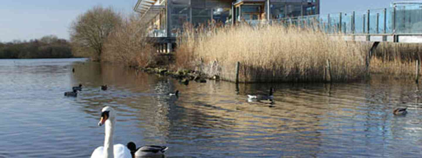 Attenborough Nature Reserve Cafe (Helen Moat)