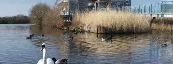 Attenborough Nature Reserve Cafe (Helen Moat)