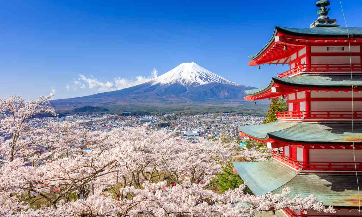 With added cherry blossoms (Dreamstime)