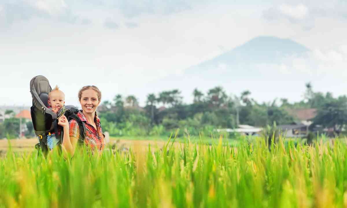 Walking amongst the rice paddies in Indonesia (Dreamstime)