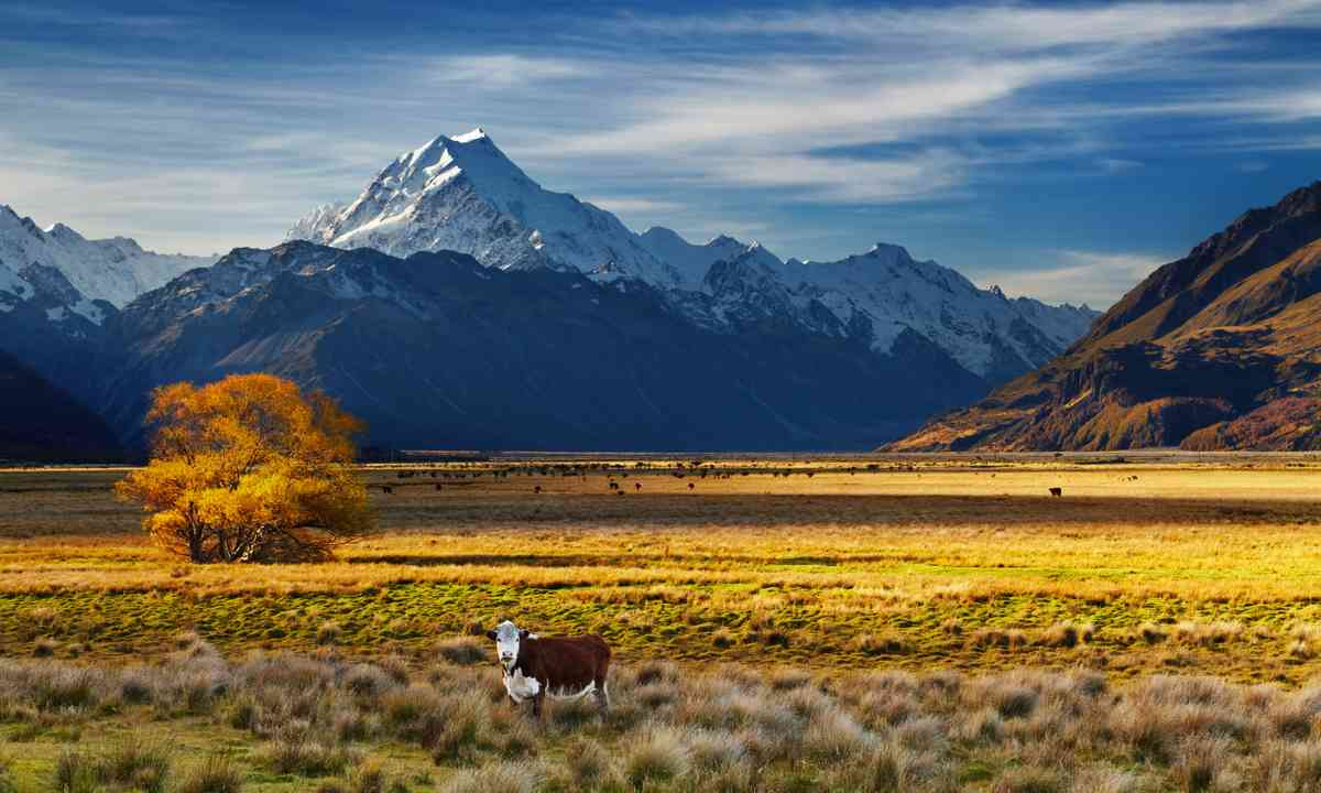 Mount Cook. Tougher than it looks. (Dreamstime)