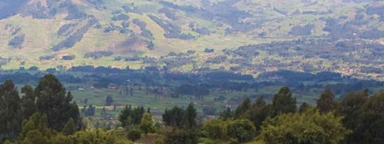 Verdant Rwandan countryside (Andries3)