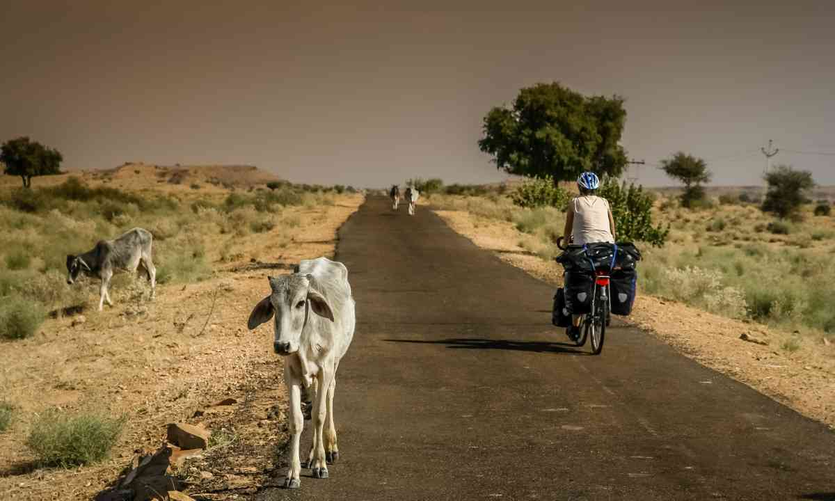Cycling through Rajasthan (Dreamstime)