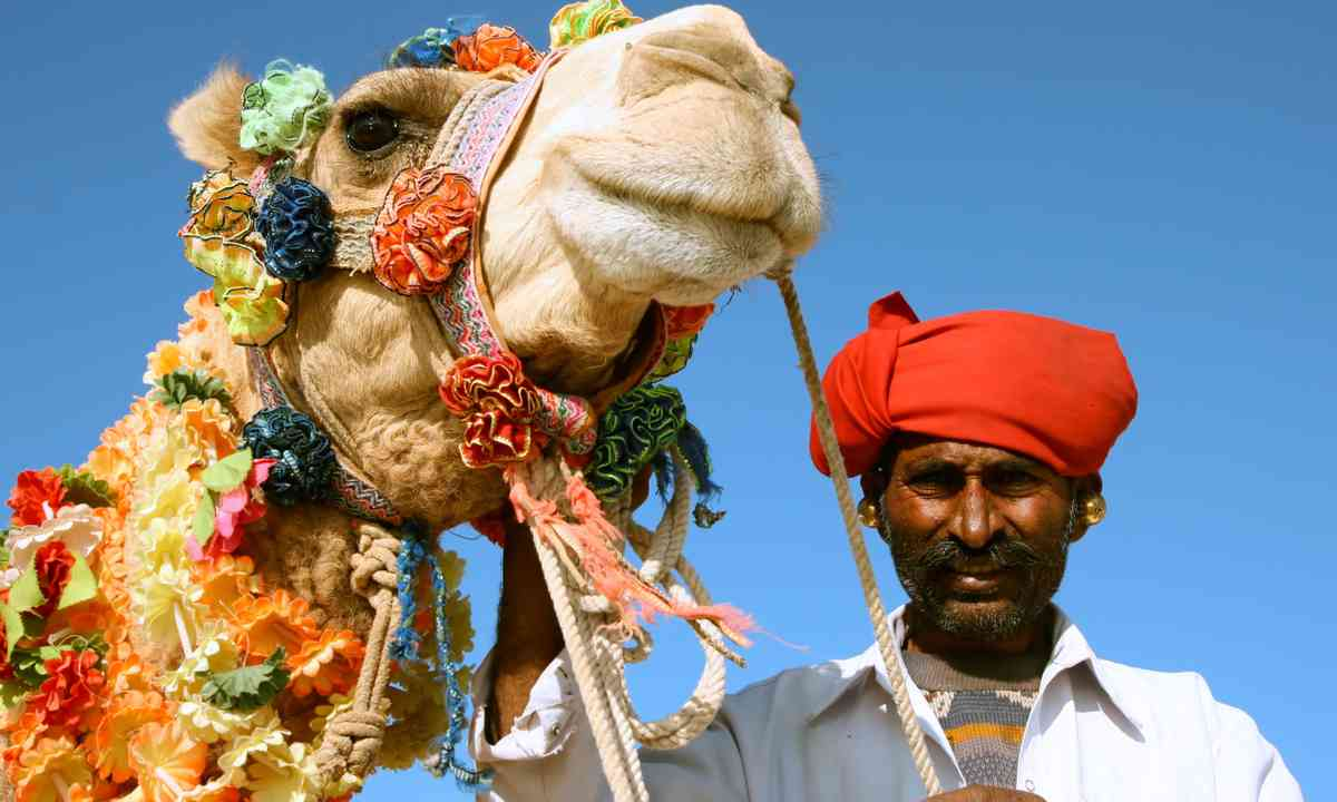 Camel trader in Pushkar (Dreamstime)