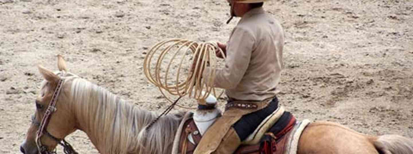 Visit Mexico for world class riding – and the home of the rodeo (Guanatos Gwyn)