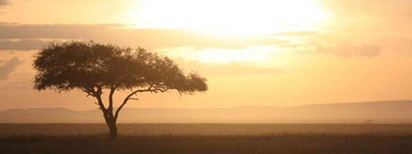 Catch sunrise over the Serengeti - or find your own safari style (Koen Muurling)