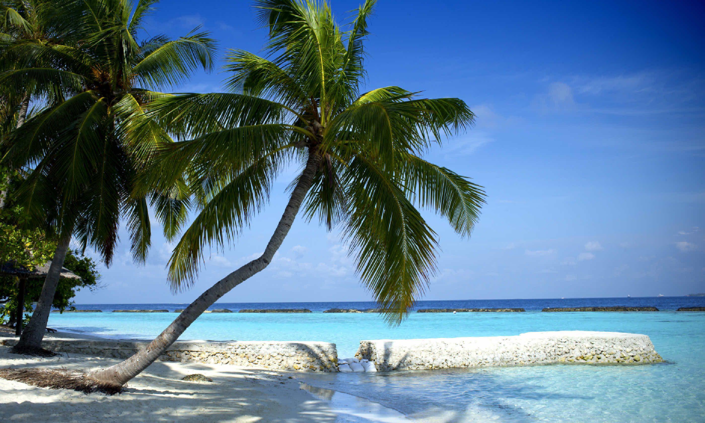 Beautiful beach in the Maldives (Shutterstock)