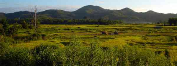 Discover jungles, islands and mountain villages (mst7022)