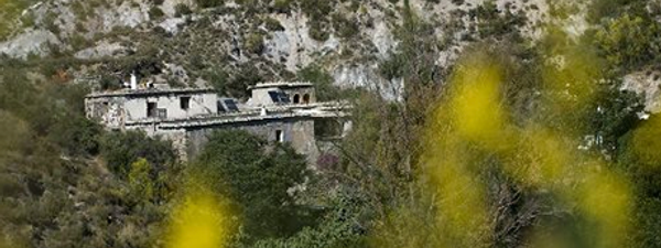 Lemon vista (DrivingOverLemons.com)