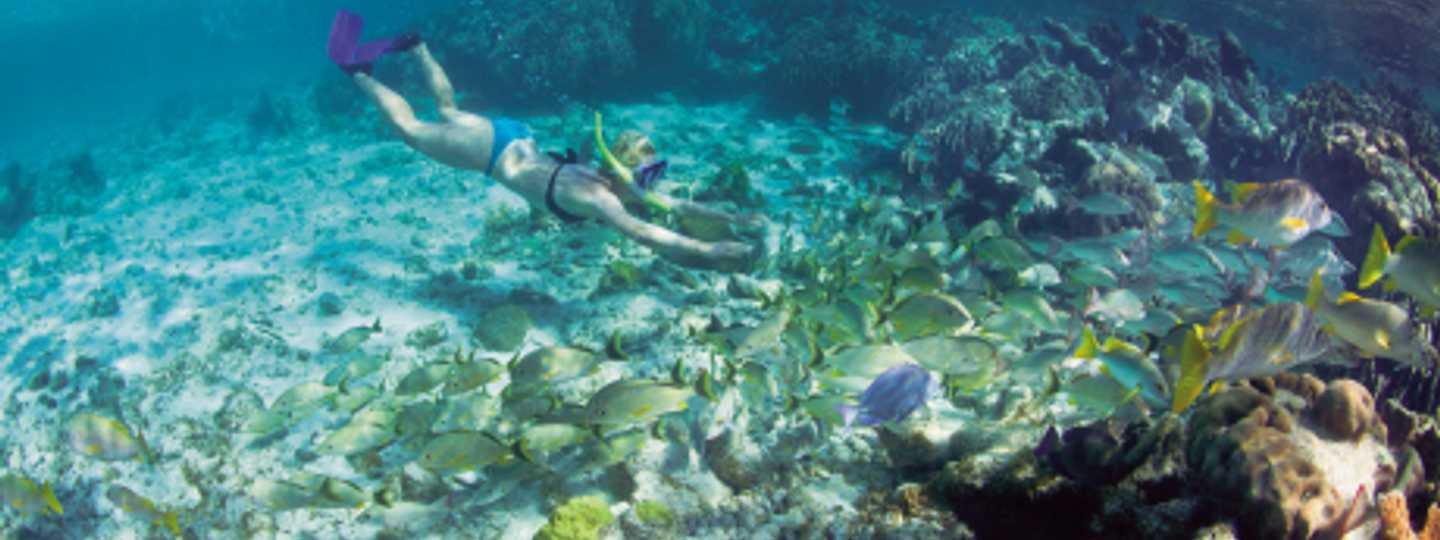 Belize is home to the second biggest Barrier Reef in the world (iStock)