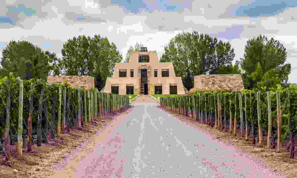 Catena Zapata vineyard in Mendoza (Dreamstime)