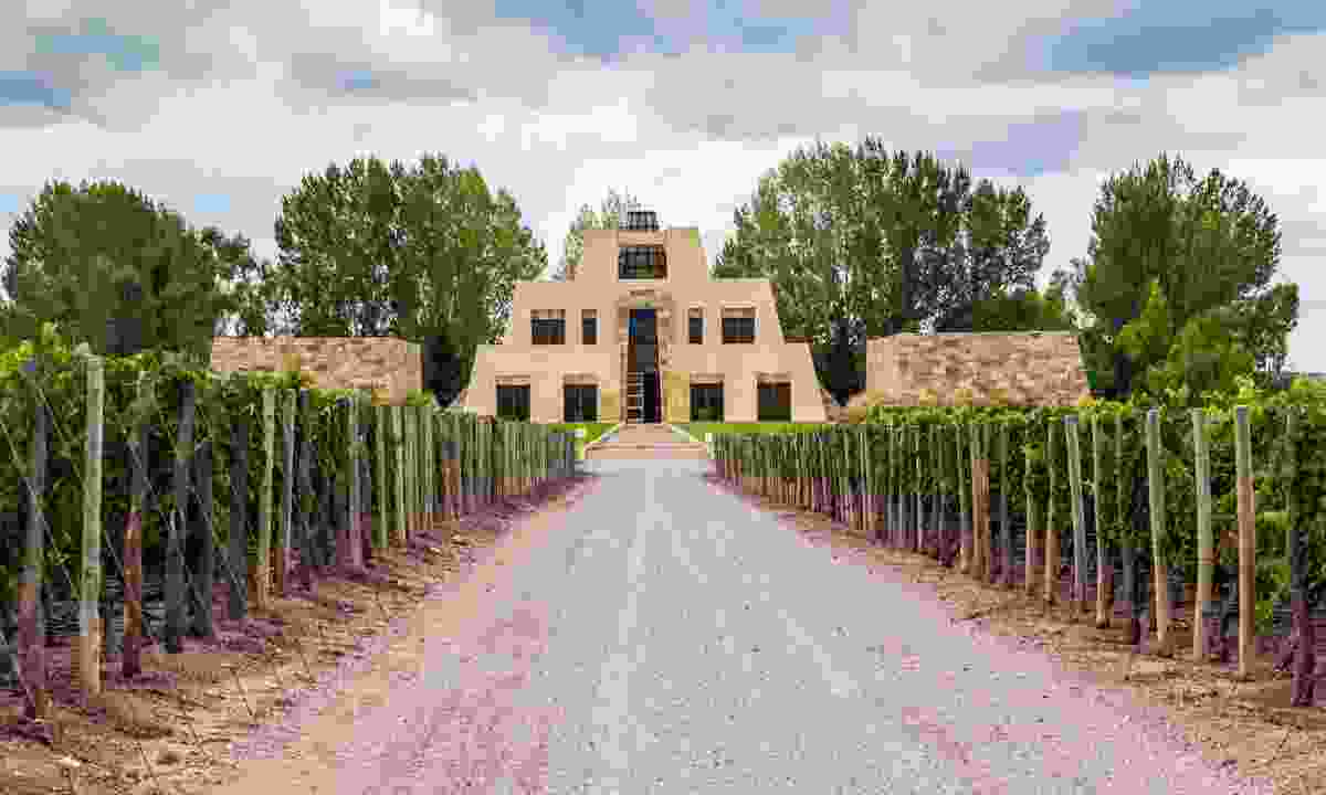 Catena Zapata vineyard in Mendoza (Dreamstime)
