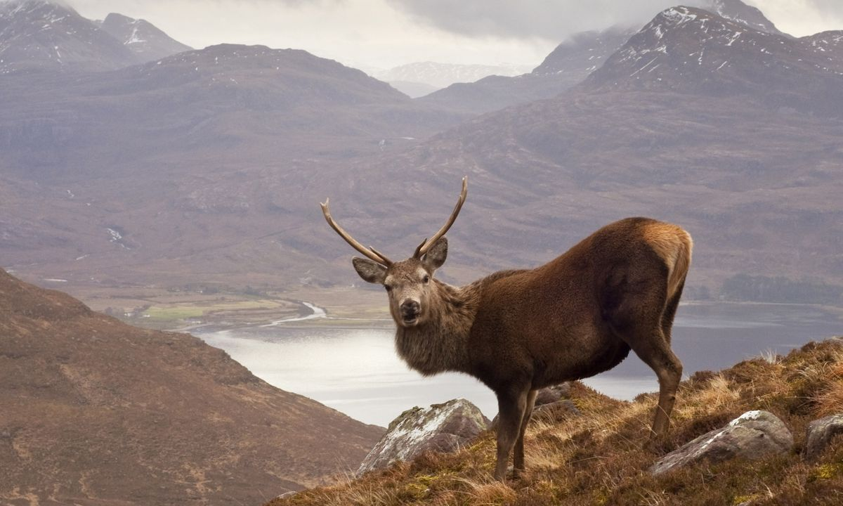 The Wanderlust guide to the best of Scotland