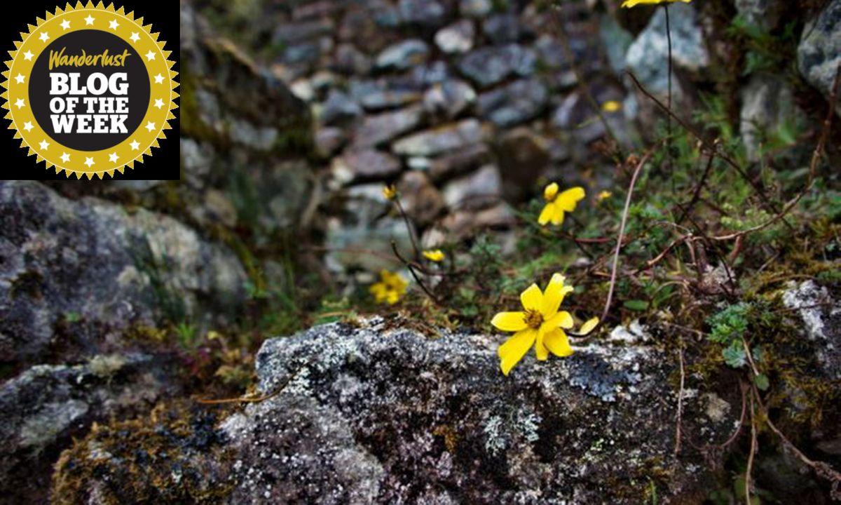 Step-by-step along the Inca trail to Machu Picchu