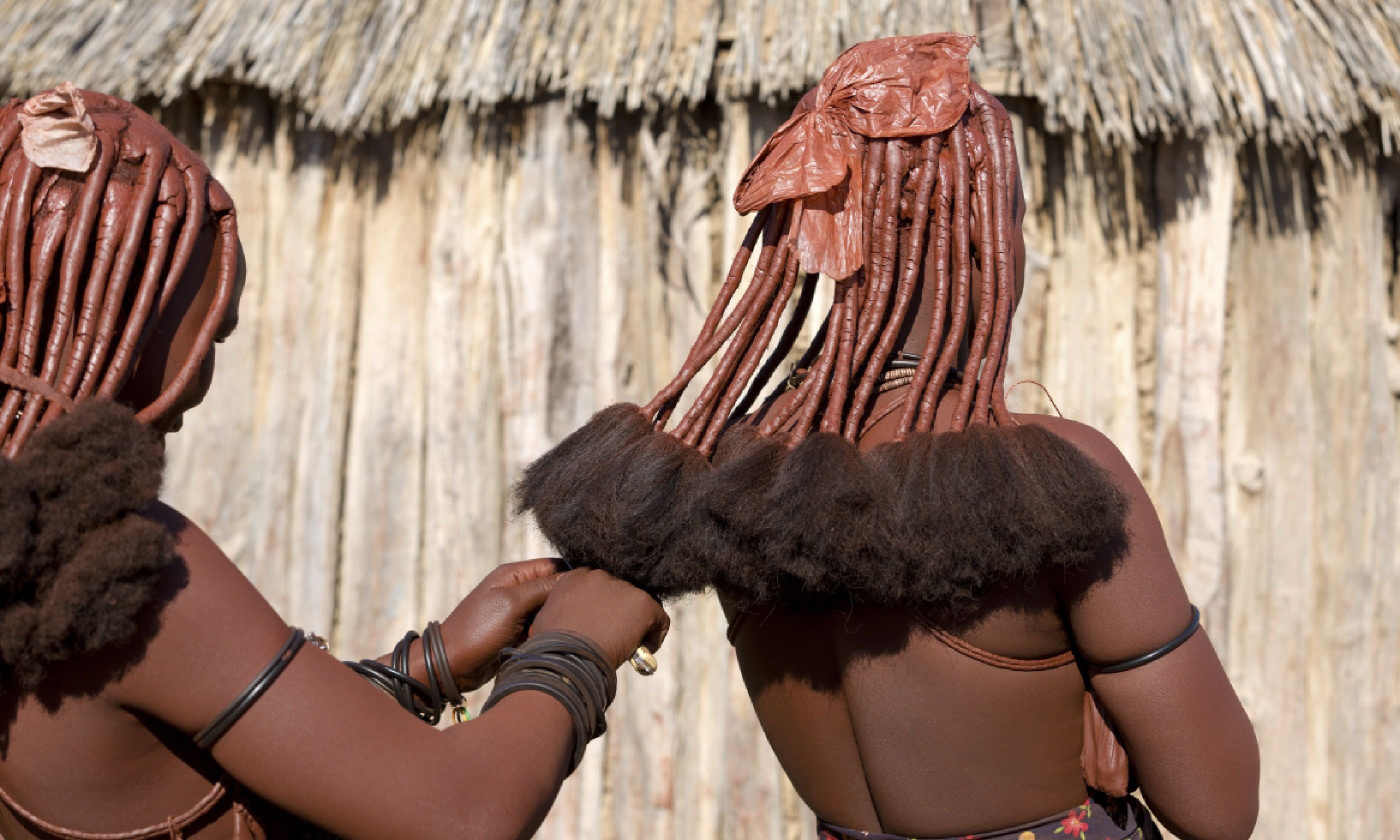 Making the traditional Himba hairstyle (Shutterstock)