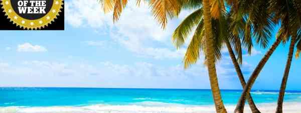 Maldivian beach. (Shuttterstock.com. See credit below)