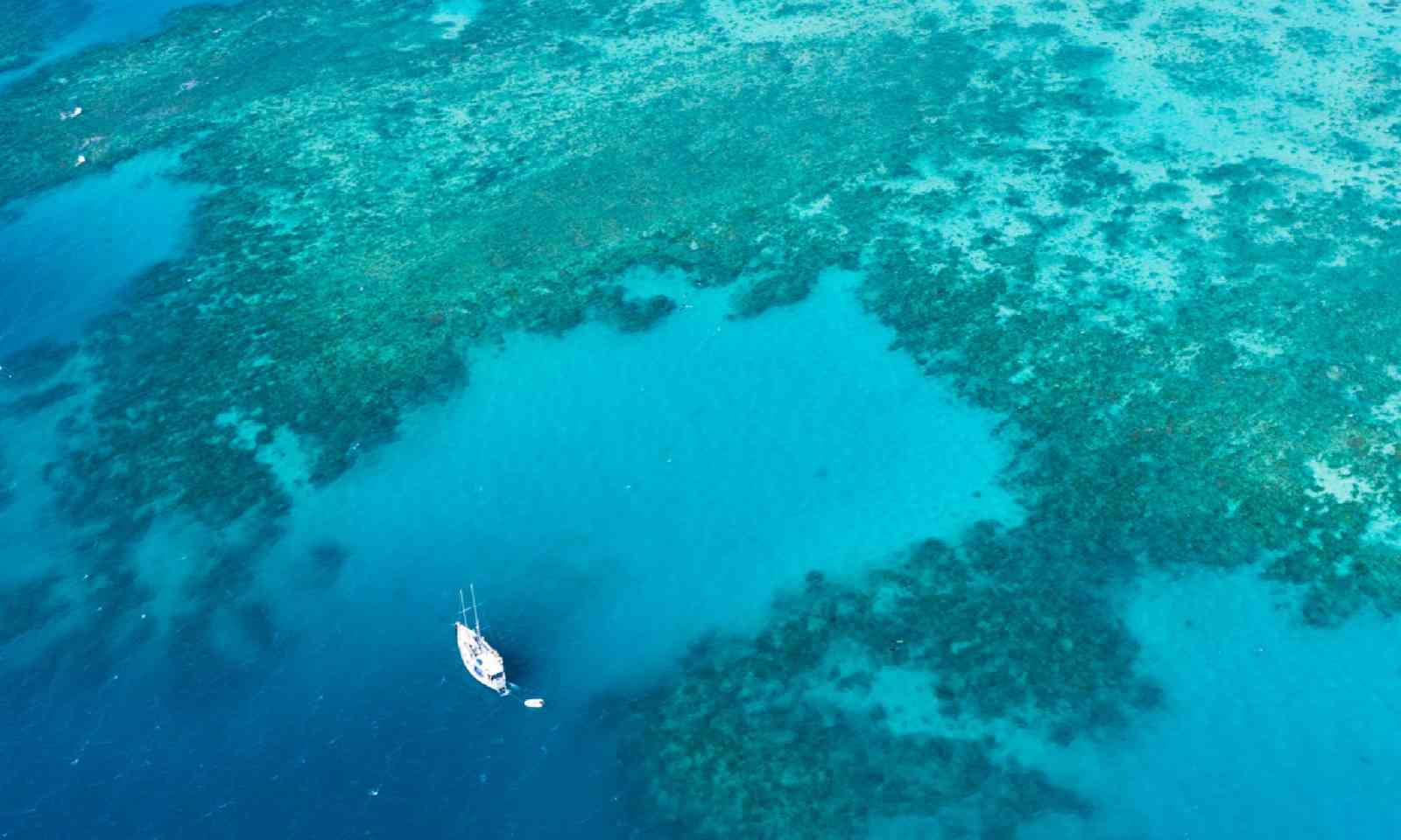 Liveaboard boat on the Great Barrier Reef (Shutterstock)