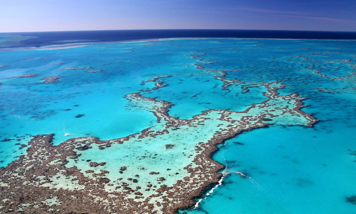 Ultimate guide to the Great Barrier Reef