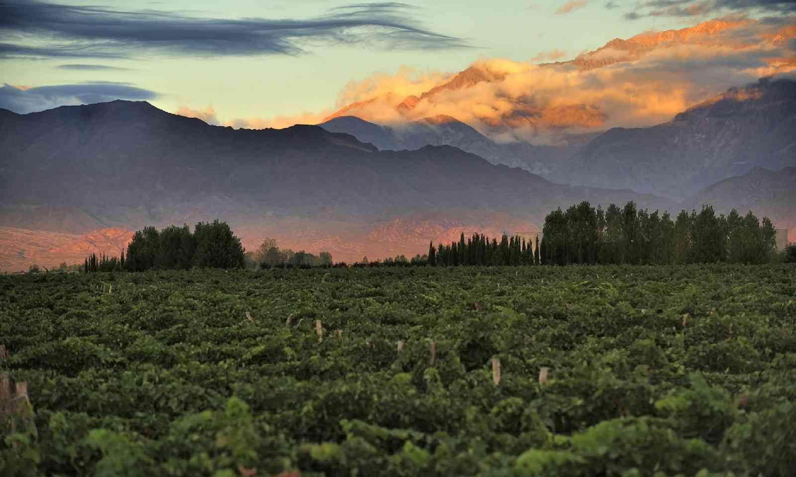 Sunrise in Medoza (Shutterstock)