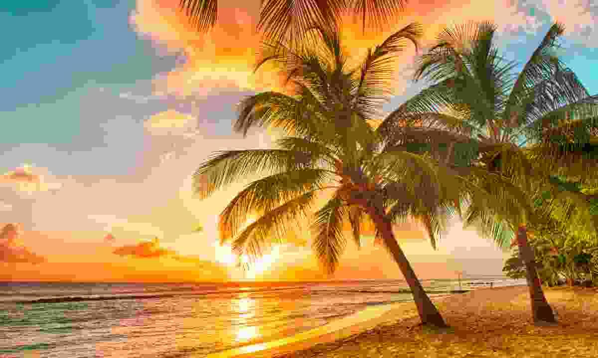 A beach in Barbados (Dreamstime)