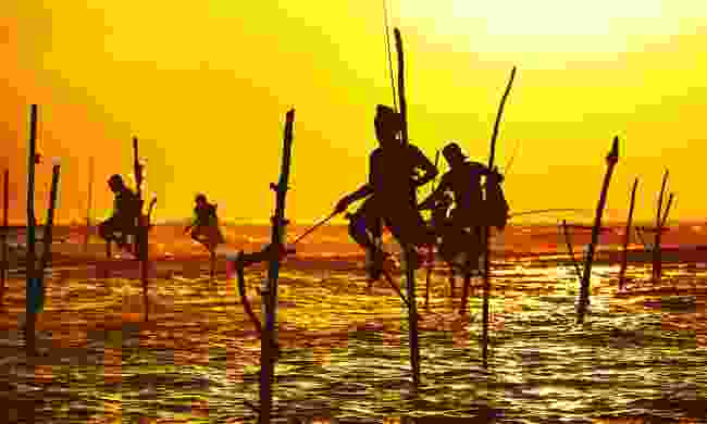 Stilt fishing near Galle (Dreamstime)