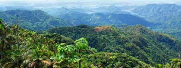Puerto Rico: part-tamed but still wild (Martin Symington)
